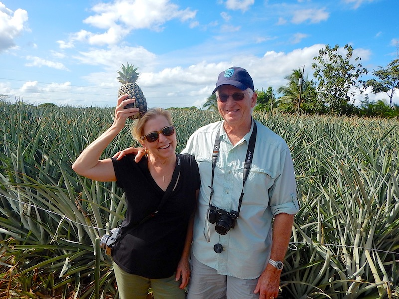 Cara Goldsbury Costa Rica pineapple farm image
