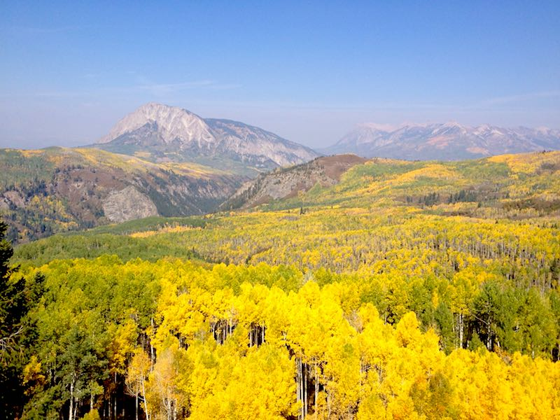 Crested Butte, Co aspen in fall image