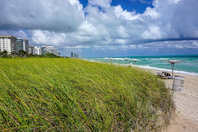 Four Seasons, The Surf Club beach image