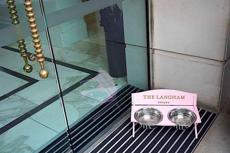 The Langham Sydney pink dog bowl image