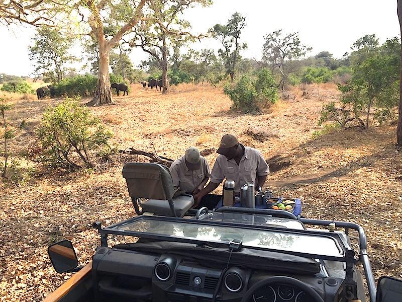 Singita Lebombo teatime in the bush image