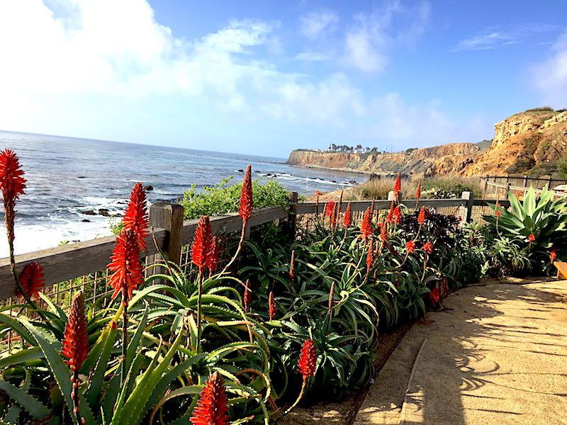 Terranea: A California Coastal Oasis Far From the Crowds | Blog